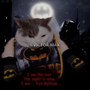 tn_Fat Batman