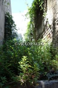 tn_Recoletta Cemetery
