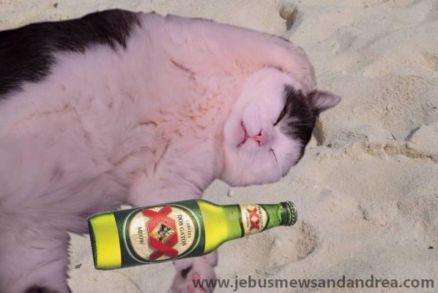 tn_Drunk Jebus
