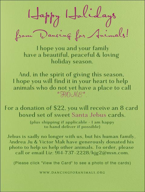 Jebus Card decrsip